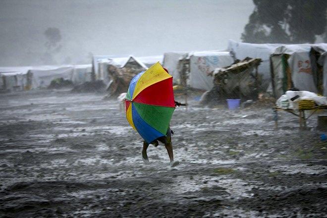 diplased rebel in rain